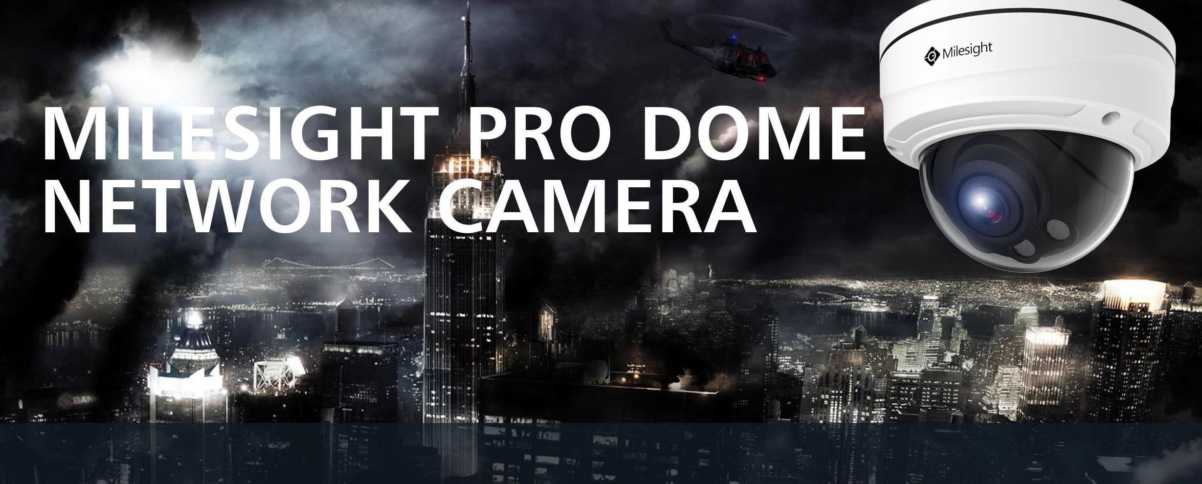 ProDomeMenue